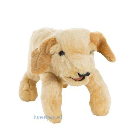 Folkmanis blonde labrador pup