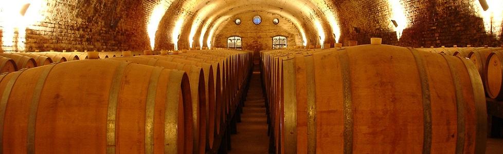 Biologische wijnen in ruste