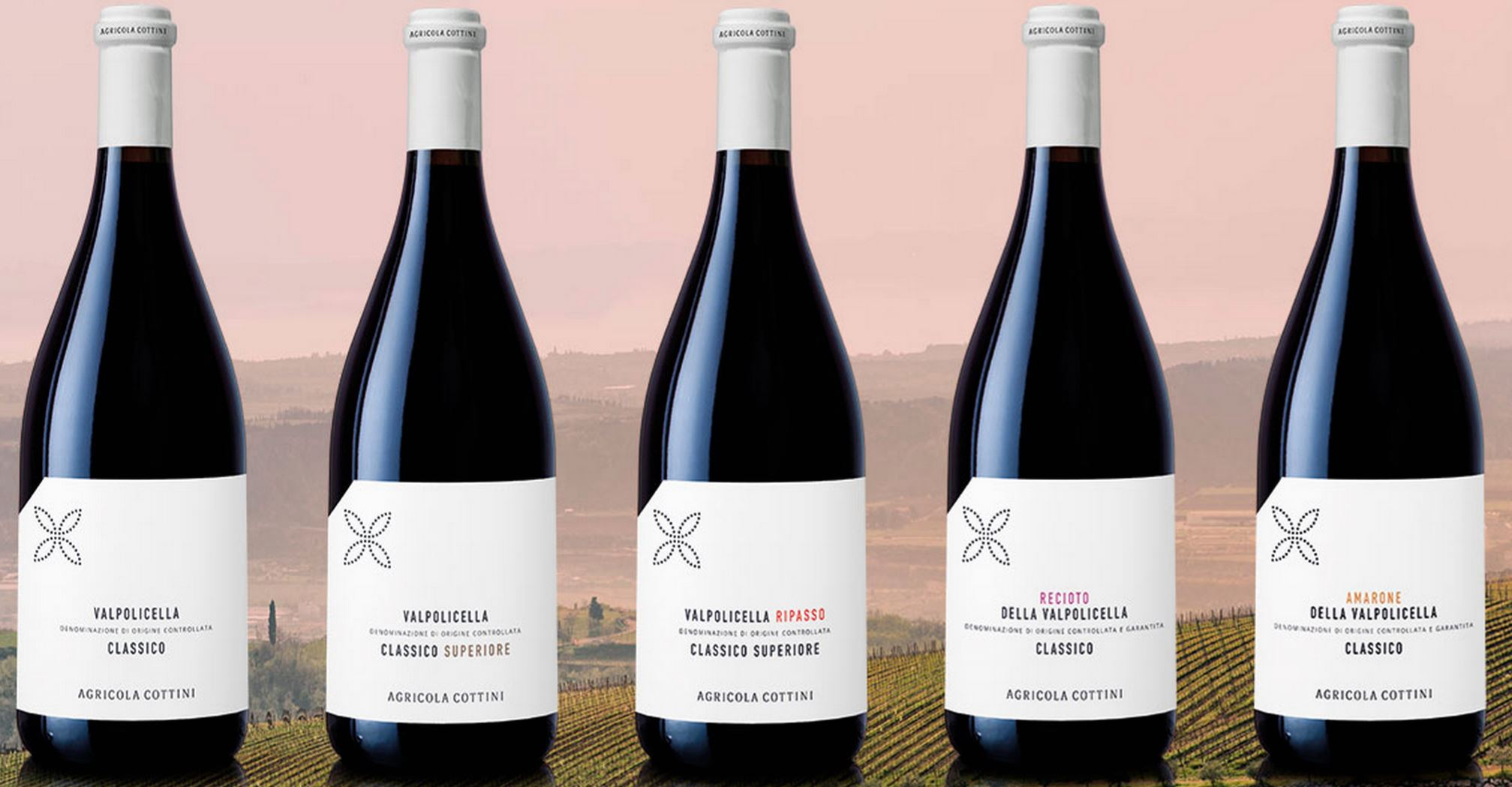 Wijnen Agricola Cottini