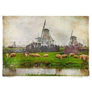 TSS-Nijkerk Holland's tafereel