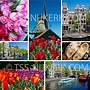 Holland Collage