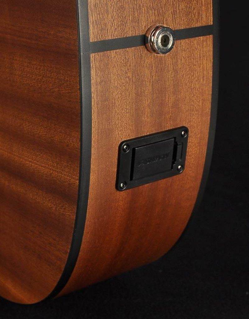Richwood A-20-E Master Series handgemaakt auditorium OOO gitaar