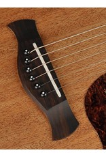 Richwood D-50-CE Master Series handmade dreadnought guitar