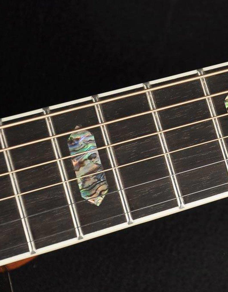 Richwood D-70-VA Master Series handmade dreadnought guitar