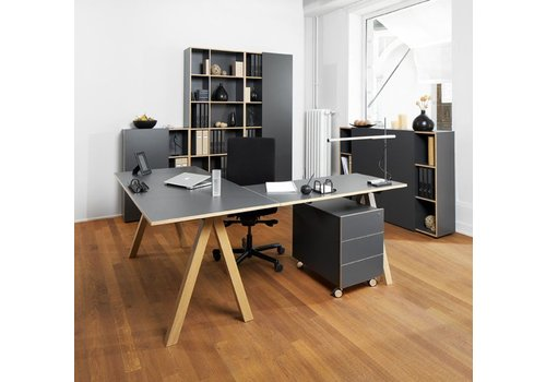 Reinhard Oslo bureau in wit of antraciet