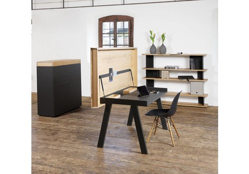 Reinhard Celerina Home-Office desk