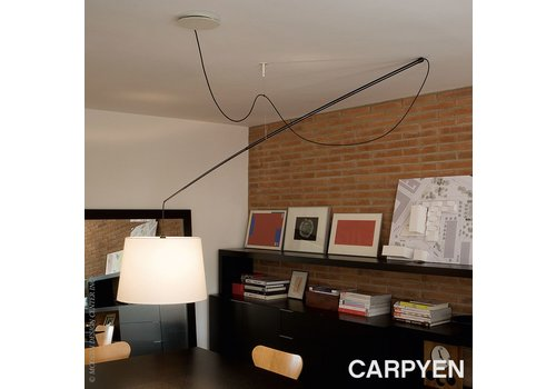 Carpyen Robinson hanglamp