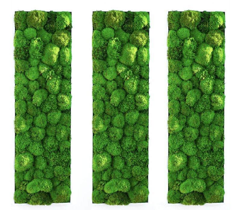 Kokoon tableaux végétaux de mousse boule - Brand New Office 1c8caa8864e