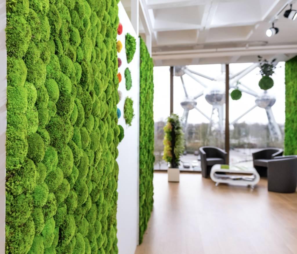 Beroemd Plantenwand uit mosbol - Brand New Office YP79