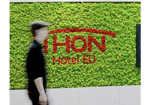 Green Mood Murs de revêtement en lichen