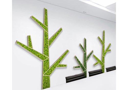 Green Mood Akoestische Moss trees