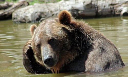 Zie jij altijd beren op de 'ik ga sporten' weg? Wij gaan je inspireren!