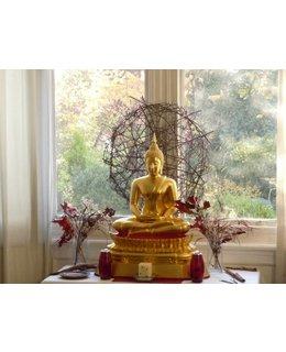 Boeddhistische Psychologie,  trainingsweekend op 2 & 3 Juni 2018