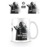 Star Wars Rogue One Darth Vader Profile - Mok