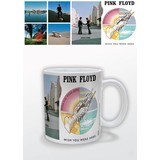 Pink Floyd Wish You Were Here - Mok
