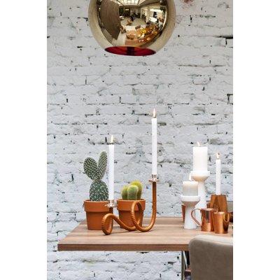 Cactus Spalten gemischt: Nur 6 pro Verkauf