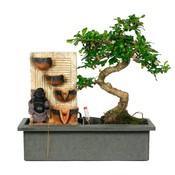 Bonsai Easycare mit Buddha und Wasserfall