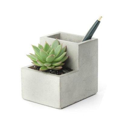 Kikkerland Pen holder with concrete planter S
