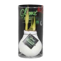 Amaryllis Amaryllis Kein Wasser, Blumen Glowz® in Sleeve