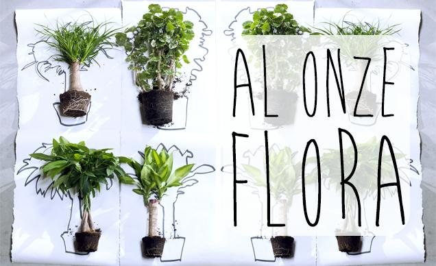 Topkwaliteit planten kopen! banner 2