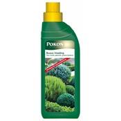 Plantenvoeding Pokon Buxus nutrition 500 ml