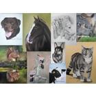 Dierenportretten in opdracht