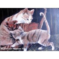 Katten in de hooiberg