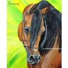 Arabisch Paard Pianissima