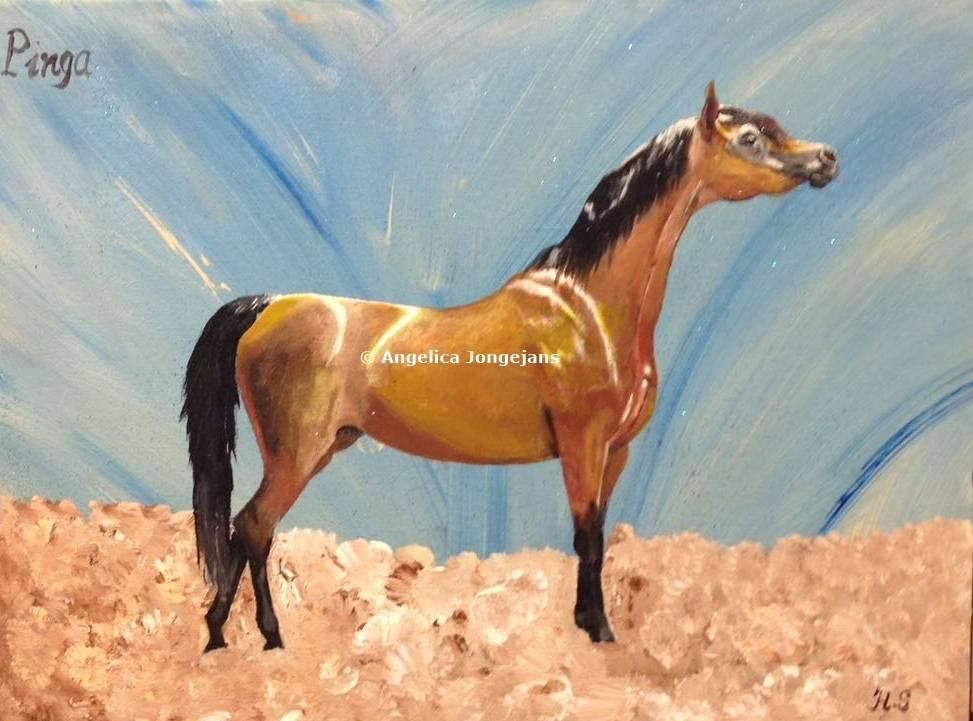 Schilderij Arabisch : Home » Arabisch Paard Pinga- Angelica Jongejans