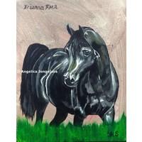 Arabisch Paard Erianna FMA