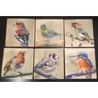 Vogels op houten paneel