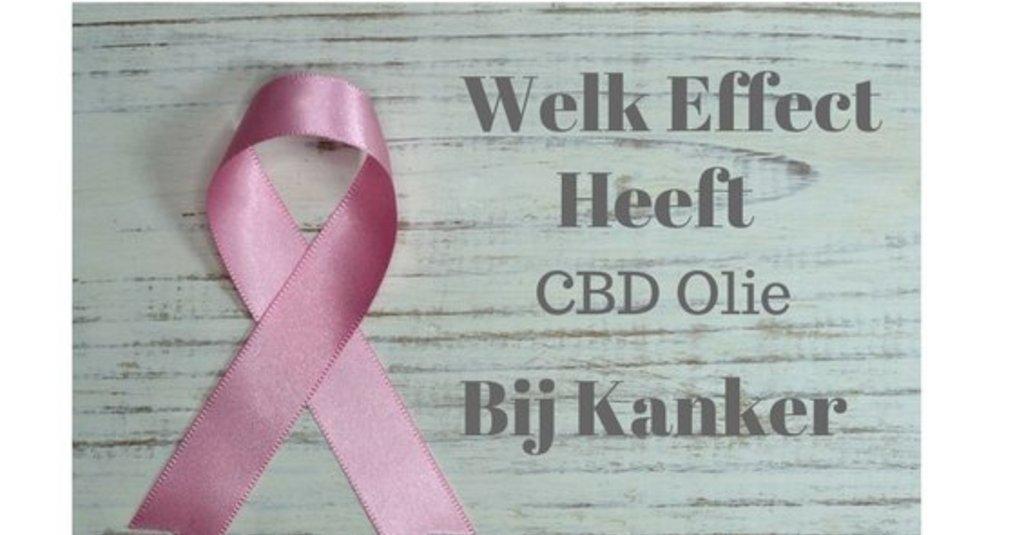 Welk effect heeft CBD olie bij kanker?
