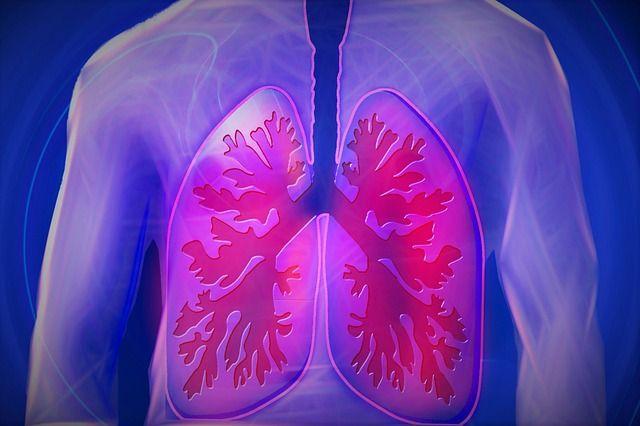 De meerwaarde van een CBD olie bij COPD
