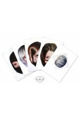 Roos van der Vliet Storytellers Kaartenset met 5 kaarten