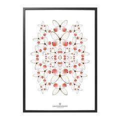 Hagedornhagen poster Speculo SP1 pink butterflies