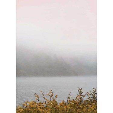 Vissevasse Poster California Dreaming - Misty Morning 01