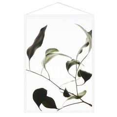 Moebe print Floating Leaves 09
