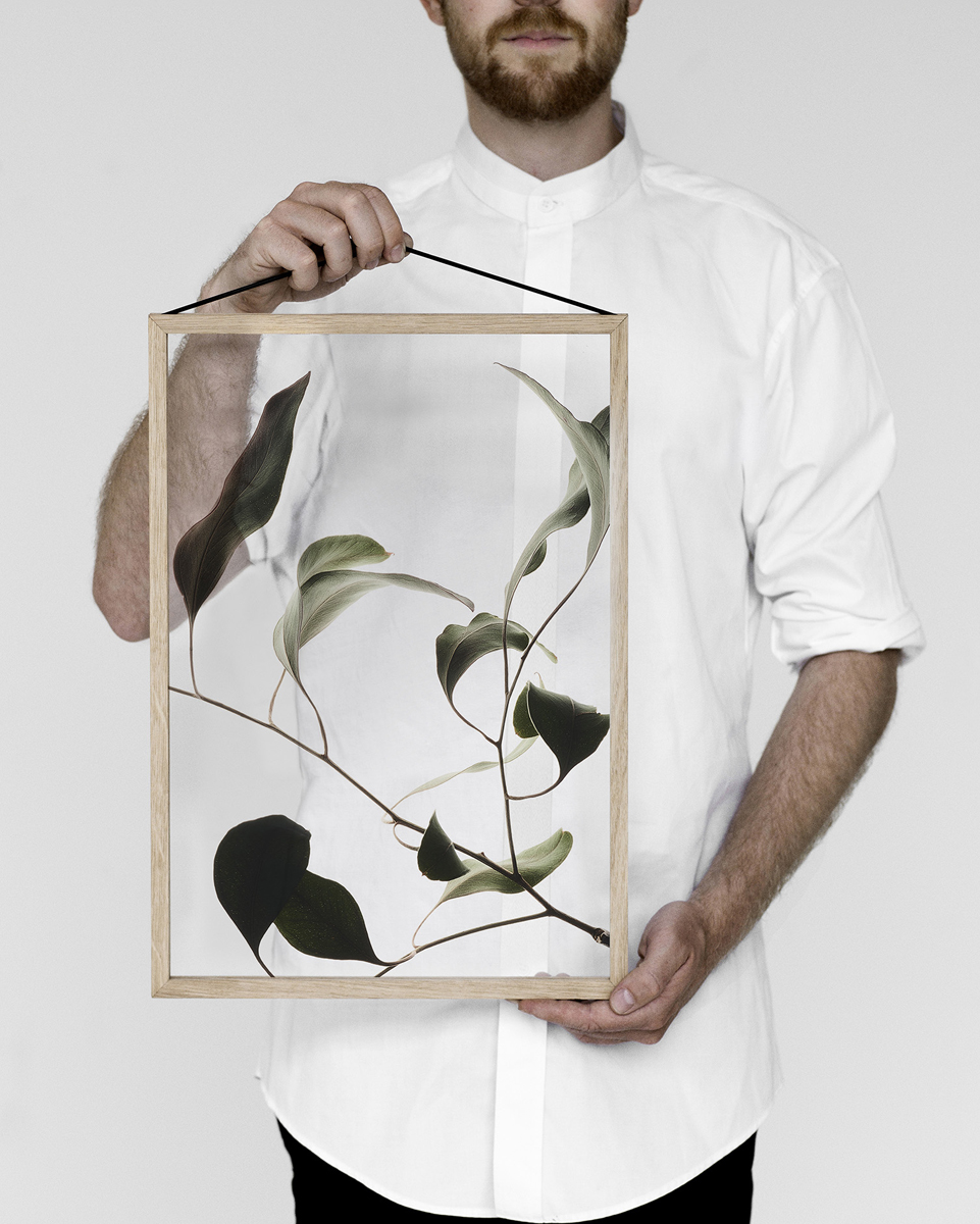 Moebe Frames en Floating Leaves
