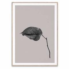 Paper Collective poster Sabi Leaf  03