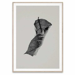 Paper Collective poster Sabi Leaf  04