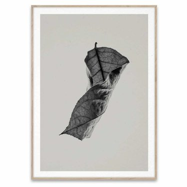 Paper Collective Poster Sabi Leaf 04