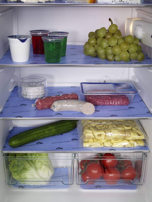 Hoe hygienisch is jouw koelkast?  Spaar op je energieverbruik met een schone koelkast.