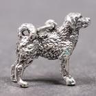 Silver pendant of the Wetterhoun