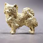 Vergoldete Brosche der Chihuahua