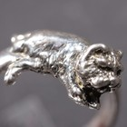 Silver ring of the Westie