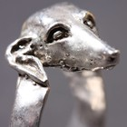 Silver ring of the Whippet