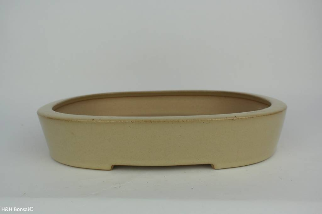 Tokoname, Bonsai Pot, no. T0160013
