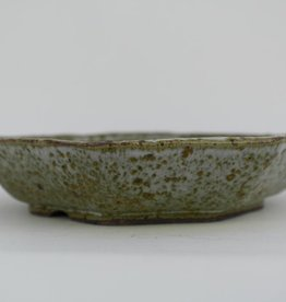 Tokoname, Bonsai Pot, no. T0160029