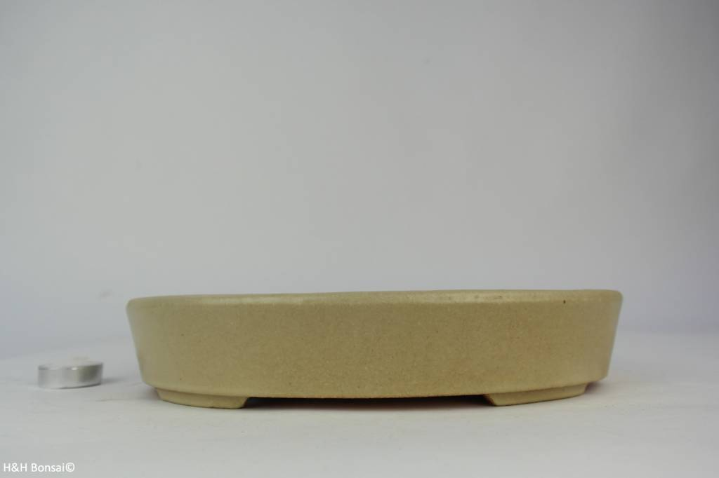 Tokoname, Bonsai Pot, no. T0160144