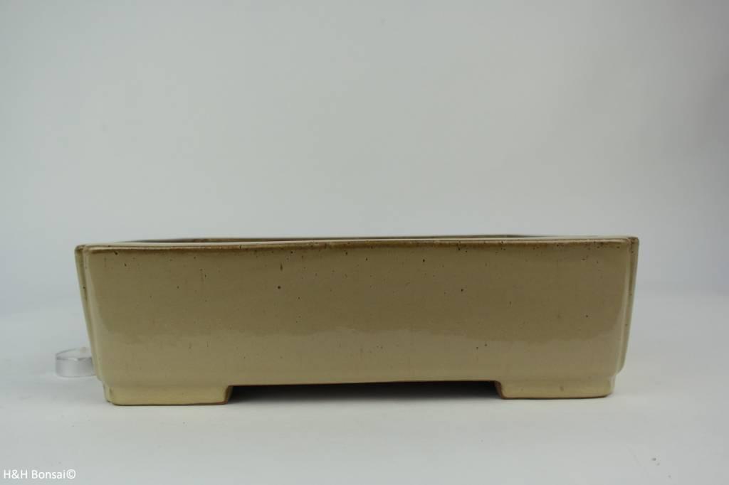 Tokoname, Bonsai Pot, no. T0160151